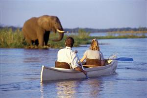 kayak-safari-on-the-zambezi-river-with-transport-from-livingstone-in-livingstone-145506