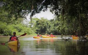 kayak-safari-peñas-blancas-1